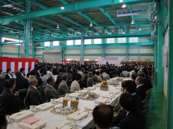 20090502-hinoki2.JPG